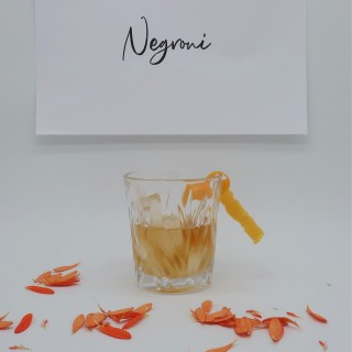 Negroni_glass_square.jpg
